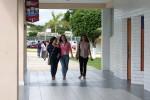 Resultados Beca Manutención y Apoyo de gastos de transporte Tamaulipas